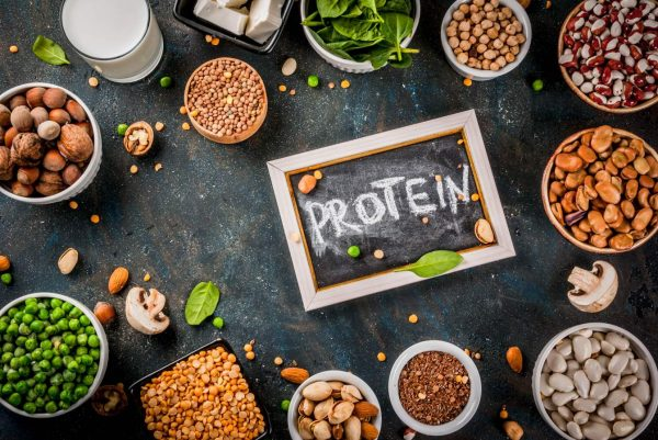 plant based protein foods